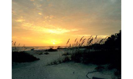 Florida - 5 Orte die du gesehen haben musst